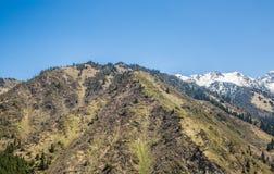 Panorama delle montagne, della neve e del cielo di verde della natura in Chimbulak Almaty, il Kazakistan Immagine Stock