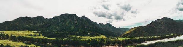Panorama delle montagne di Altai con il fiume di Katun Fotografie Stock Libere da Diritti