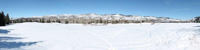Panorama delle montagne di Colorado Fotografia Stock