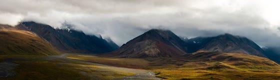 Panorama delle montagne di Denali Fotografia Stock Libera da Diritti
