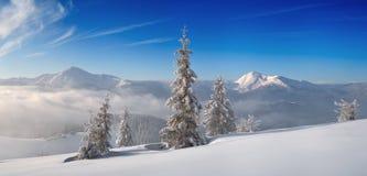 Panorama delle montagne di inverno nel pomeriggio fotografia stock libera da diritti