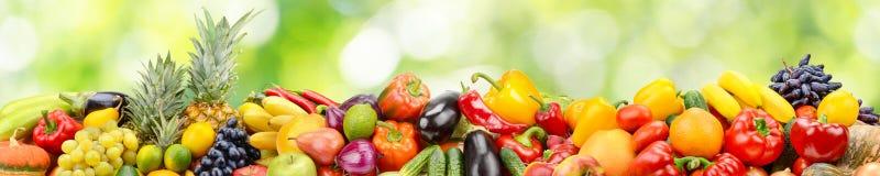 Panorama delle verdure e della frutta su verde astratto vago indietro Fotografia Stock