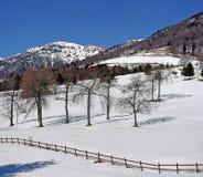 Panorama der Berge der Alpen im Winter Stockbilder