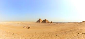 Panorama der Giseh-Wüste mit den großen Pyramiden und den Kamelen, Ägypten stockfotos