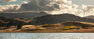 Panorama der goldenen Felder des Rollens Stockfotografie