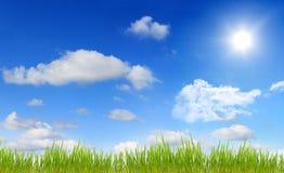 Panorama der Himmelsonne und -grases Stockfoto