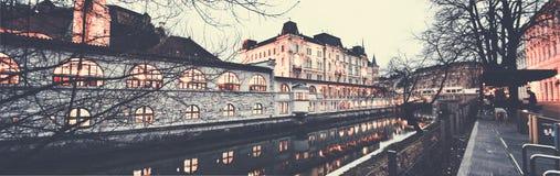 Panorama der Ljubljana-Mitte stockbild