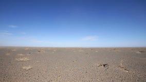 Panorama der mongolischen Landschaft stock video