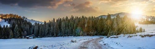 Panorama der schneebedeckten Straße durch gezierten Wald in den Bergen an der Sonne Lizenzfreie Stockbilder