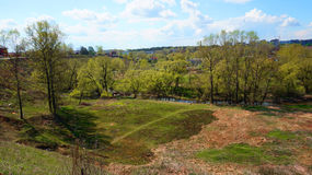Panorama der Stadt und der Bäume Stockfotografie