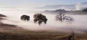 Panorama der Toskana-Ackerlandlandschaft Lizenzfreie Stockbilder