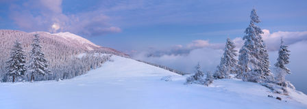 Panorama der Winterlandschaft Stockbilder