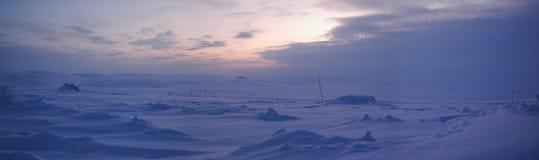 Panorama der Wintertundra (Nord-Sibirien) Stockfotografie