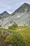 Panorama des crêtes de dvor de Dzhangal et de momin, montagne de Pirin Images stock