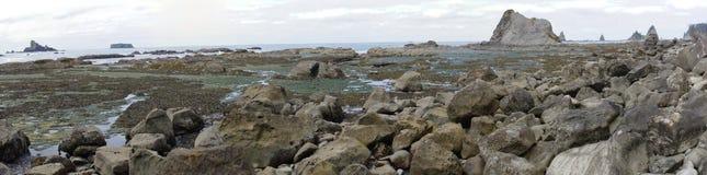Panorama des formations de piscines et de roche de marée à marée basse images libres de droits