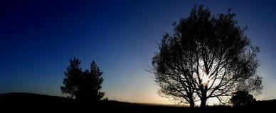 Panorama des frühen Morgens Stockbilder