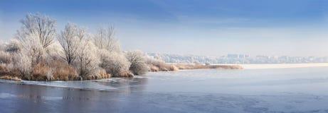 Panorama des gefrorenen Teichs stockbilder
