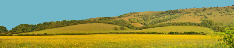 Panorama des gelben Feldes und des Hügels Stockfotos
