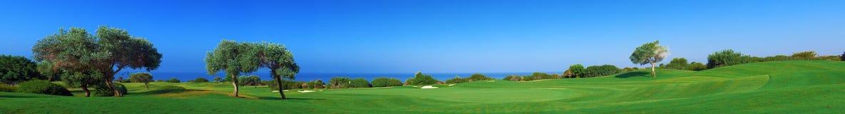 Panorama des Golffeldes, -meeres und -oliven Stockbild