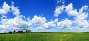 Panorama des grünen Feldes und des blauen Himmels Stockbilder