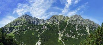 Panorama des montagnes Images libres de droits