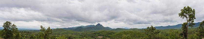 Panorama des montagnes et de la forêt photographie stock libre de droits