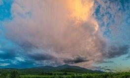 Panorama des montagnes et des vignobles au coucher du soleil. Image libre de droits