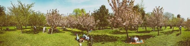 Panorama des personnes ayant l'amusement dans le jardin japonais du parc public de Herastrau Photographie stock libre de droits