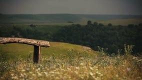 Panorama des Sommerfeldes in den Bergen bedeckt durch Grün landschaft Zaun stock footage
