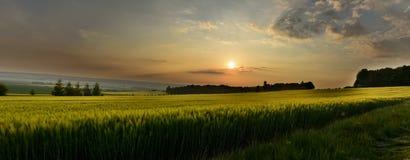 Panorama des Sonnenuntergangs über dem Feld Lizenzfreies Stockbild