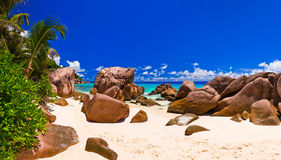 Panorama des tropischen Strandes Stockfotografie