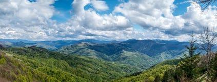 Panorama des Ukrainers Karpaten Stockbild