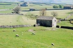 Panorama des vallées de Yorkshire (R-U) Image stock