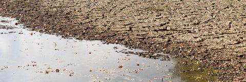 Panorama des vermindernden Wassers und der Dürre im Teich stockfotos