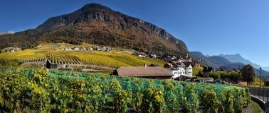 Panorama des vignobles d'automne en Suisse Photo libre de droits