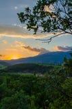 Panorama des vignobles sur le coucher du soleil Photographie stock libre de droits