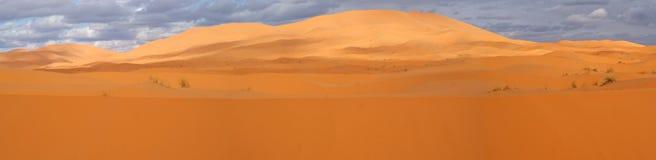 Panorama of a desert. Big dune in Sahara desert. Morocco. Panoramatic overview stock image