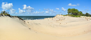 Panorama of the desert on the shores of the Baltic Sea Royalty Free Stock Images
