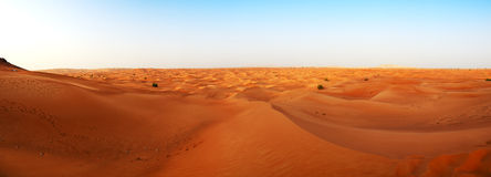 The panorama of desert during sunset. Dubai, UAE Royalty Free Stock Photos