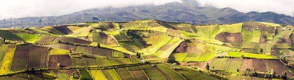 Panorama di agricoltura dell'Ecuador Fotografia Stock Libera da Diritti