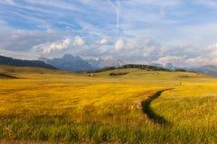 Panorama di Alpe di Siusi Fotografia Stock Libera da Diritti