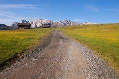 Panorama di Alpe di Siusi ad estate Fotografia Stock