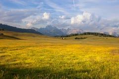 Panorama di Alpe di Suisi Fotografia Stock Libera da Diritti