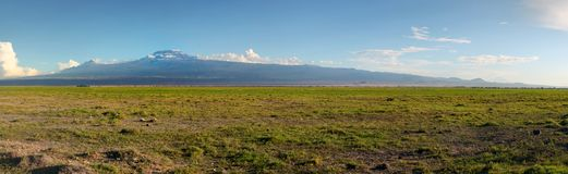 Panorama di alta risoluzione del parco nazionale di Amboseli fotografia stock