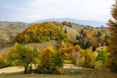 Panorama di autunno Immagini Stock Libere da Diritti