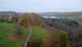 Panorama di autunno di bella foresta Fotografia Stock