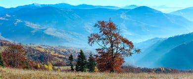 Panorama di autunno della montagna carpatica Fotografia Stock Libera da Diritti