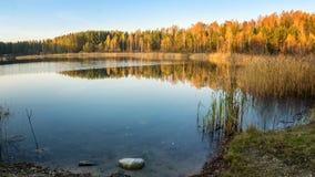 Panorama di bello paesaggio di autunno con il lago e la foresta sulla Banca della Russia, i Urals Immagini Stock