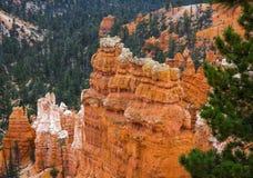 Panorama di Bryce Canyon negli Stati Uniti Immagine Stock Libera da Diritti