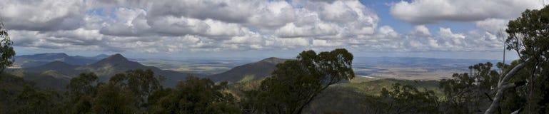Panorama di Bush dell'australiano Fotografia Stock Libera da Diritti